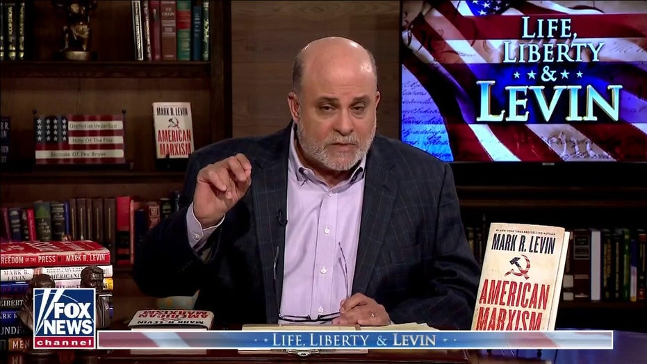 Levin: BLM and Antifa are the 'militia wing' of the Democrat Party