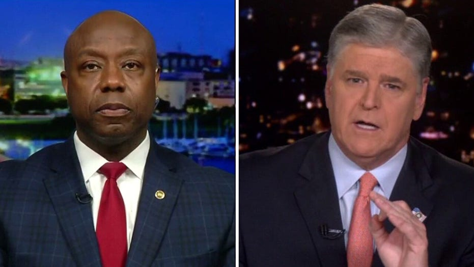 Sen. Tim Scott predicts 'coming backlash to this liberal oppression' on 'Hannity'