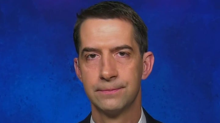 Dems want to use COVID-19 pandemic as 'an excuse' to fulfill 'longstanding liberal priorities': Cotton