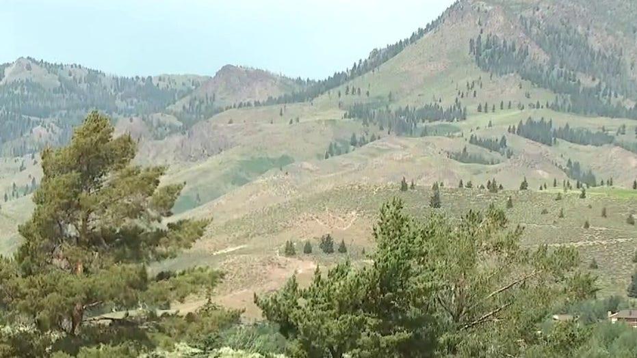 Biden Bureau of Land Management nominee linked to eco-terror plot