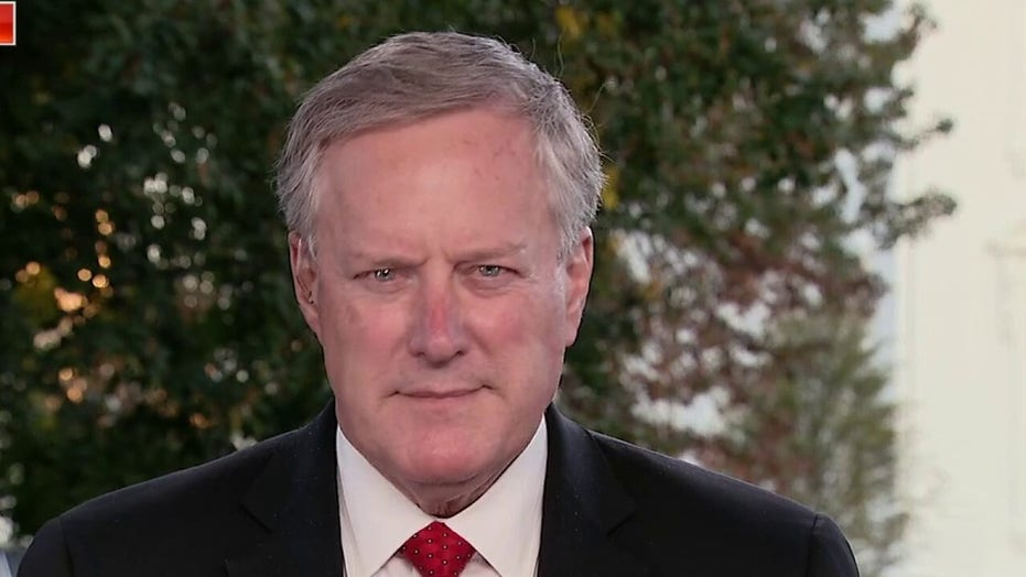 Meadows slams Pelosi suggestion that steroids influencing Trump's judgement