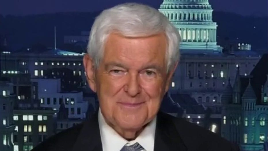 Newt Gingrich: 'Pelosi has been very tough, she runs a dictatorship.'