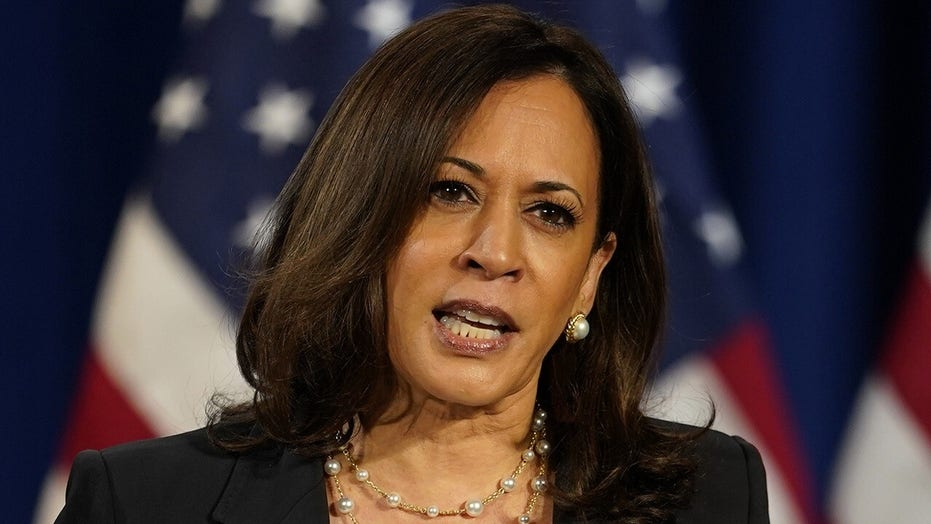 Young Black voters not excited about Joe Biden-Kamala Harris ticket, analyst says
