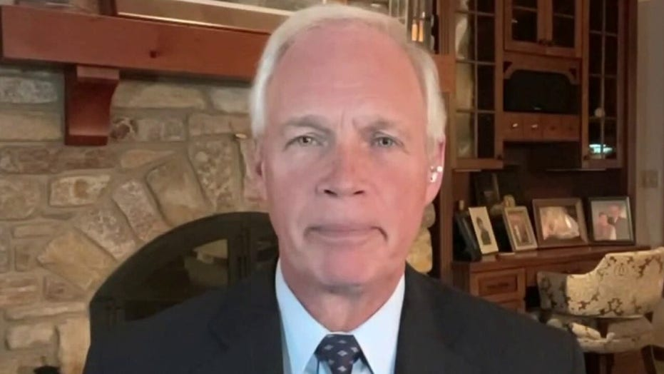 Ron Johnson drags Hunter Biden for 'sleazy' foreign dealings, new email evidence reveals