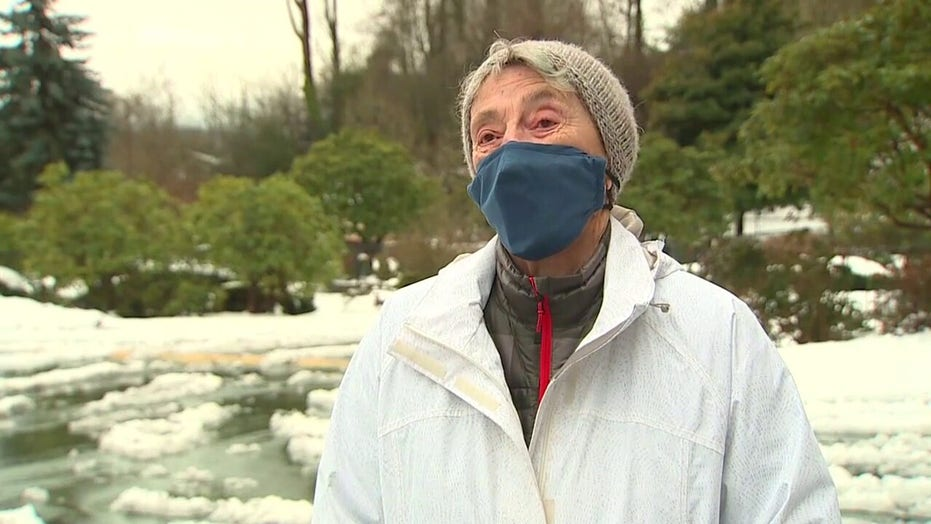 90-year-old woman braves snow storm, walks 6 miles for coronavirus vaccine