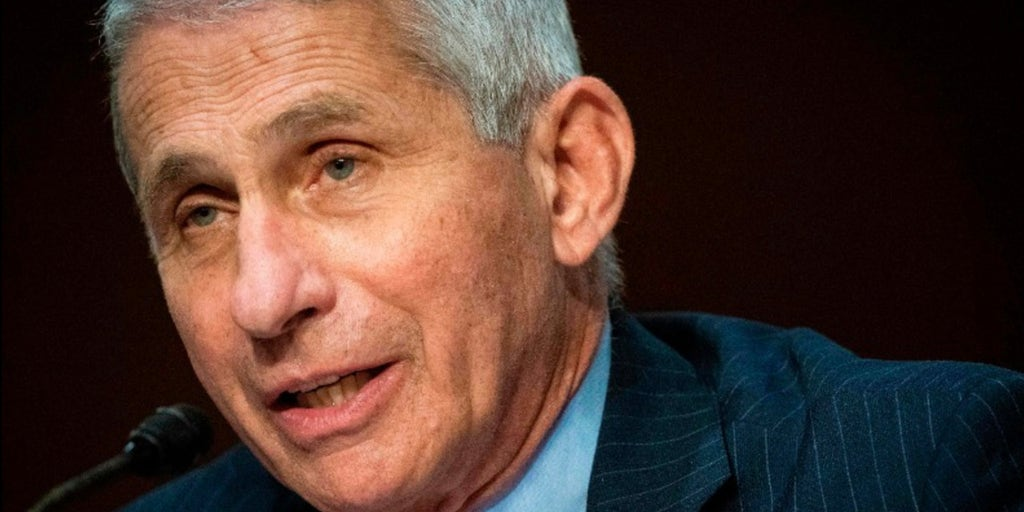Fauci says there is 'no reason' Americans can't vote in person in November