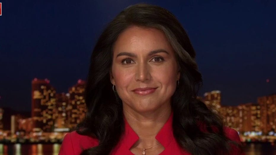 Tulsi Gabbard: 'Powerful elite' conspire with media to eliminate rivals who challenge the establishment
