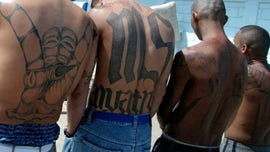 11 alleged MS-13 members arrested for sex trafficking 13-year-old girl