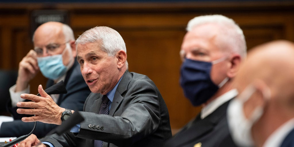 Fauci tells House committee vaccine progress strong, blames states reopening early for coronavirus surge