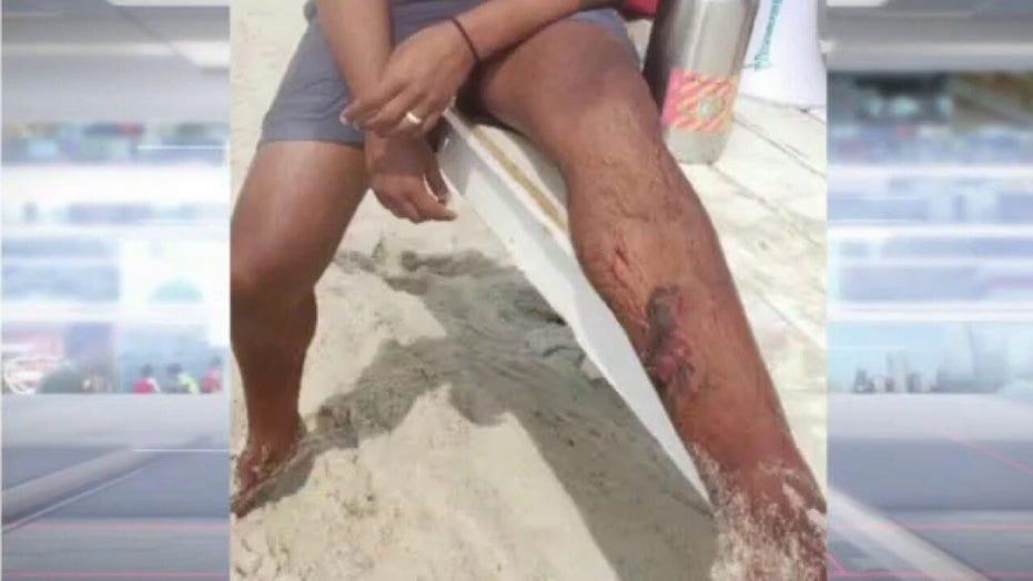 Shark sightings force NY beach closures