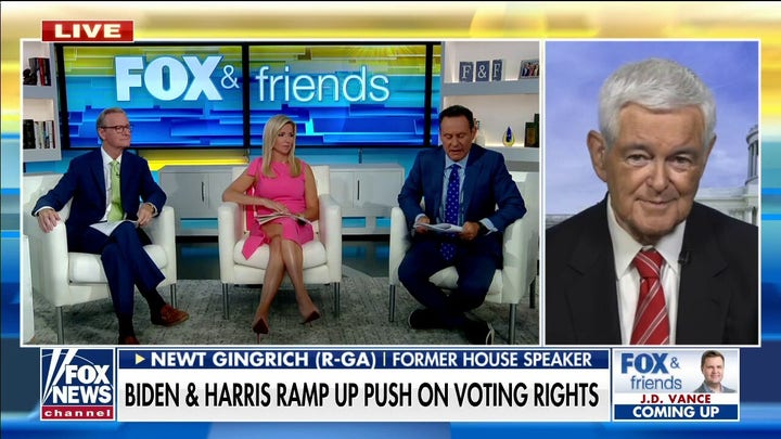Gingrich: 'Half' of the time Harris 'looks like a fool more than a VP'
