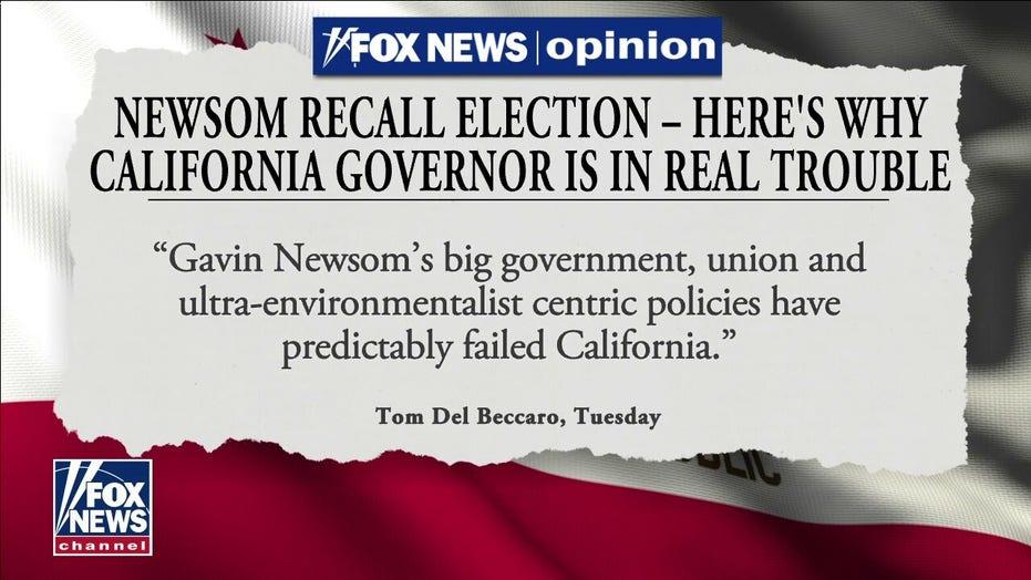 Pelosi rallies behind Newsom in California recall effort: 'We will defeat it'