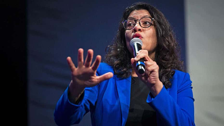Squad member Rashida Tlaib under fire from anti-Semitism watchdog