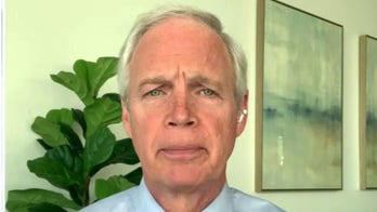 Sen. Ron Johnson to challenge 2020 election results: 'We can't turn a blind eye'