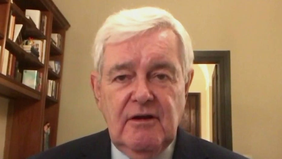 Newt Gingrich blasts 'propaganda media' for dismissing whistleblowers' accounts of election irregularities
