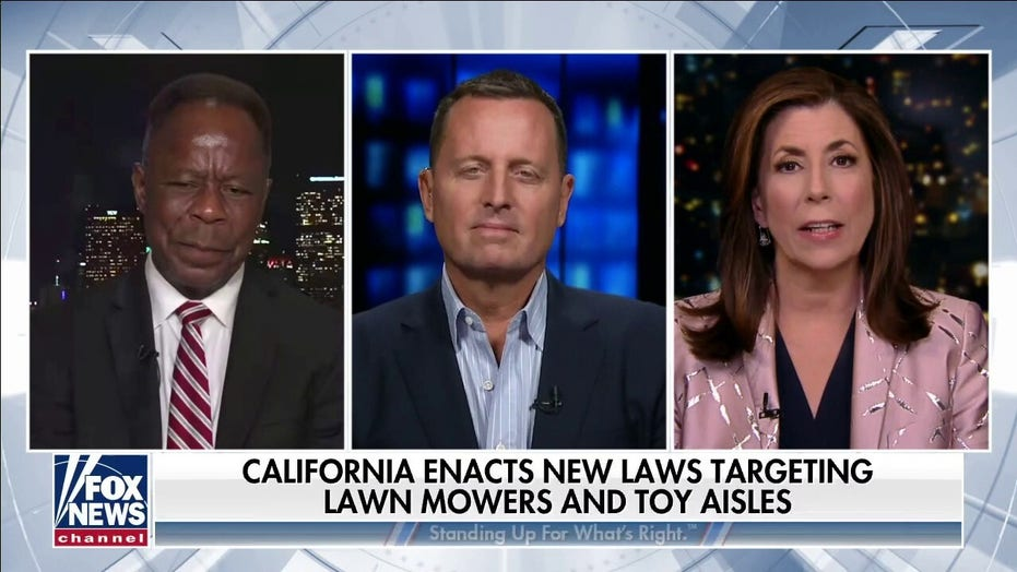 California: Gas-powered lawn equipment tops long list of things banned by Newsom