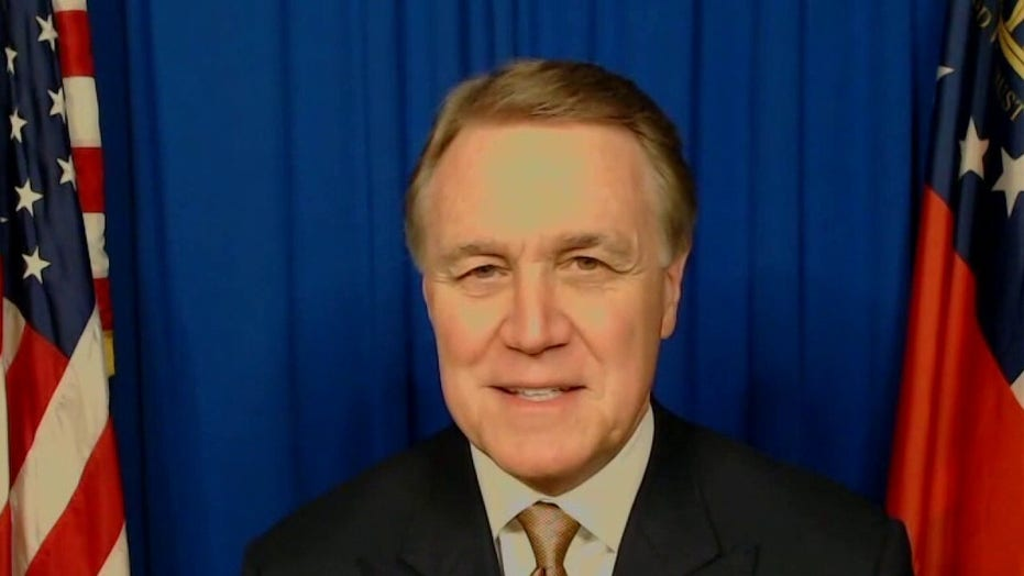 Georgia Democratic State Rep. Vernon Jones: Georgia Senate runoffs — Why I'm supporting Loeffler and Perdue
