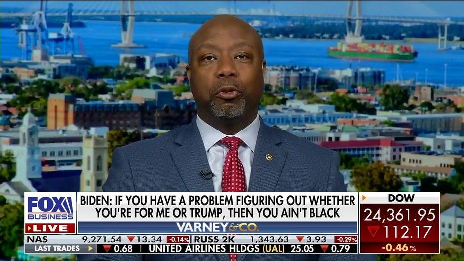 Sen. Tim Scott reacts to Joe Biden's comment on black voters