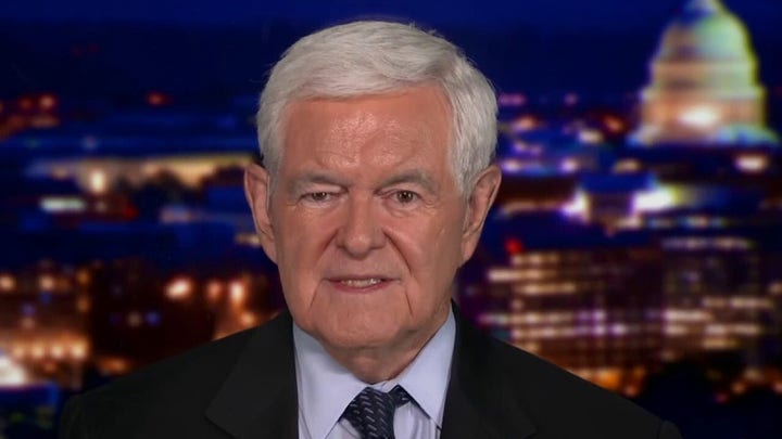 Gingrich reveals why the spending bills must be stopped