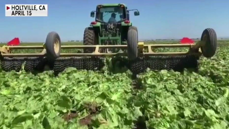 How COVID-19 pandemic affects farmers & America's food supply