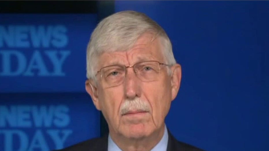 NIH Director Collins: Unvaccinated Americans 'are sitting ducks' as delta variant causes 'world of hurt'