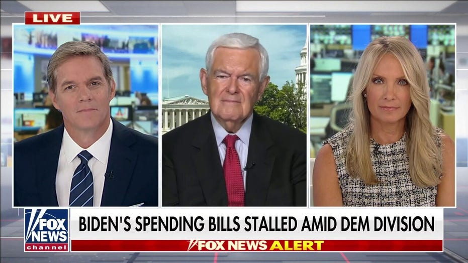 Newt Gingrich accuses Democrats of holding 'massive' spending bill 'hostage'