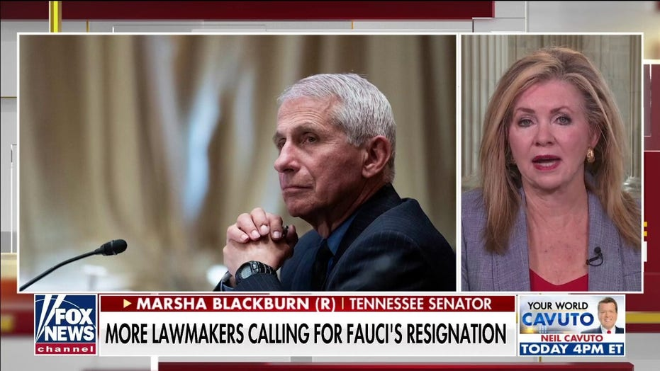 Sen. Marsha Blackburn: Question Fauci on COVID, China – here's what Senate must do to learn the truth