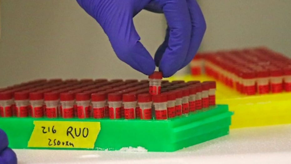 Experts warn coronavirus testing is key to reopening government