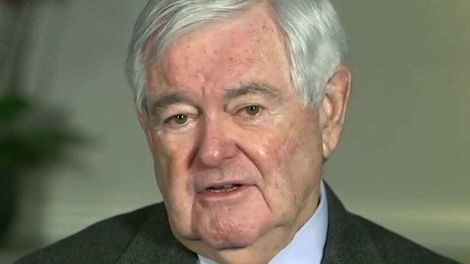 Newt Gingrich says 'Harris-Biden' immigration policy will 'shake the fabric' of American society