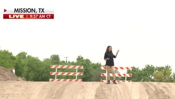 Cruz calls on Biden to fix gap in Texas levee that protects border towns