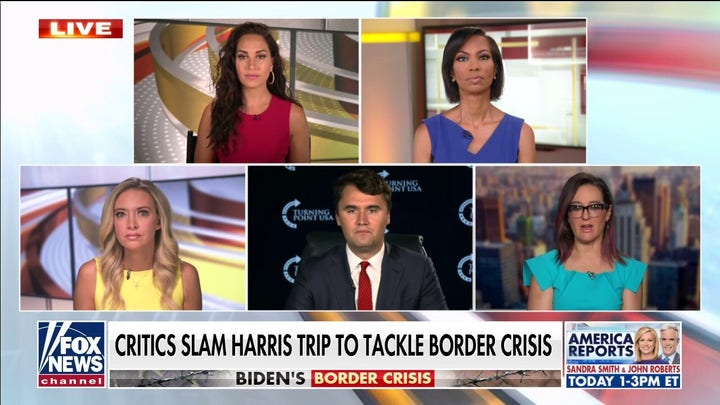VP Harris gave 'bizarre answer' to Lester Holt on not visiting the border: 查理·柯克