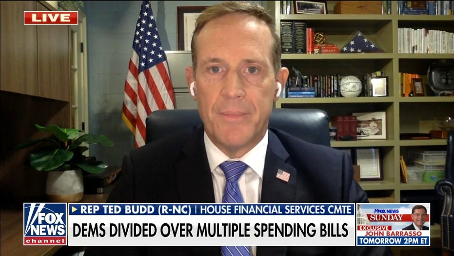 Infrastructure bill is a 'Trojan horse' for more socialism: Ted Budd