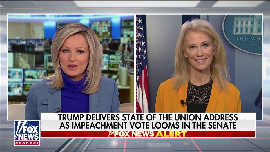 Kellyanne Conway calls for Senate resolution denouncing Pelosi's behavior