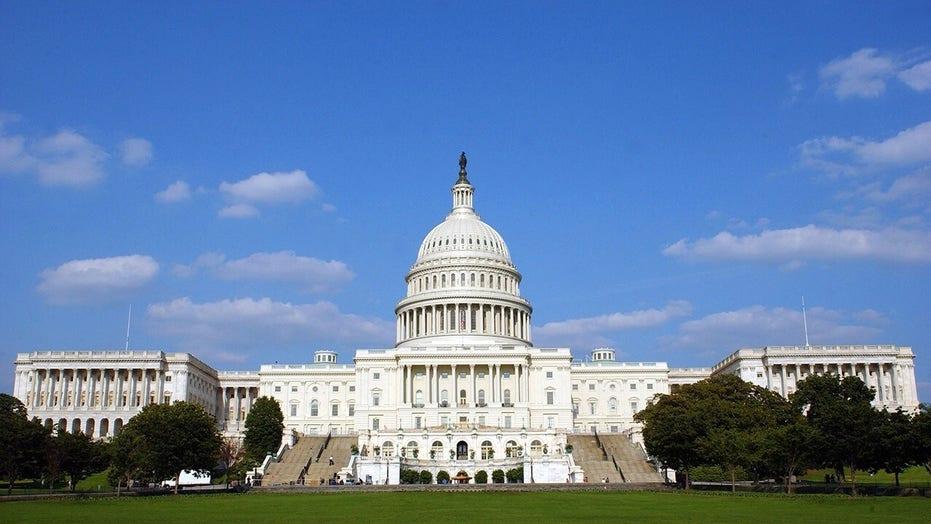 Senate parliamentarian rules against Dem amnesty push in reconciliation bill