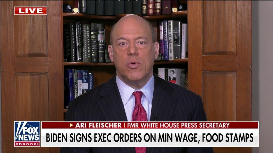 Ari Fleischer: 'Big government is back' under Biden