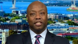 Trump's support from African-Americans will rise 50 percent or more, Tim Scott predicts
