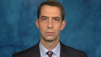 Sen. Tom Cotton: Kenosha, Minneapolis carnage will spread until politicians restore order, deter criminals