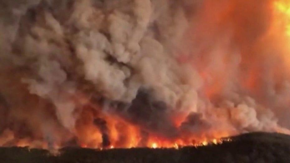 Giant sequoia tree found still smoking from 2020 California wildfire