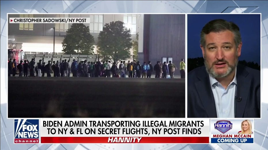 Ted Cruz blasts Biden for not enforcing laws because of the 'radical, open border' left