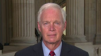 Sen. Johnson to Harris Faulkner: Biden's open-border policies creating 'disaster'