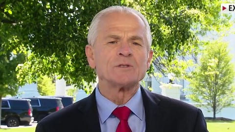 Peter Navarro: Patient zero was in Wuhan in mid-November