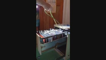 Snake found in filing cabinet in Australian home
