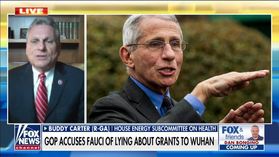 Rep. Carter says Fauci lied to Congress and should be fired