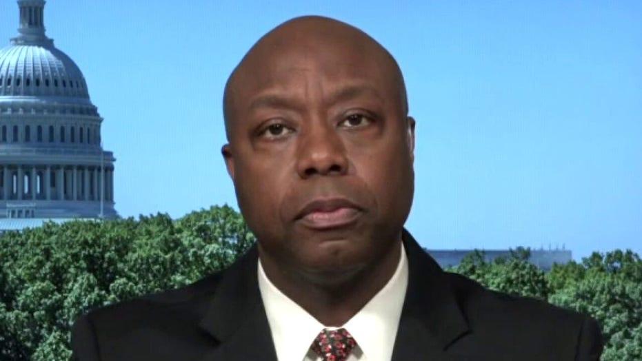 Sen. Tim Scott rips defund police movement: 'Demonizing officers results in crime spike'
