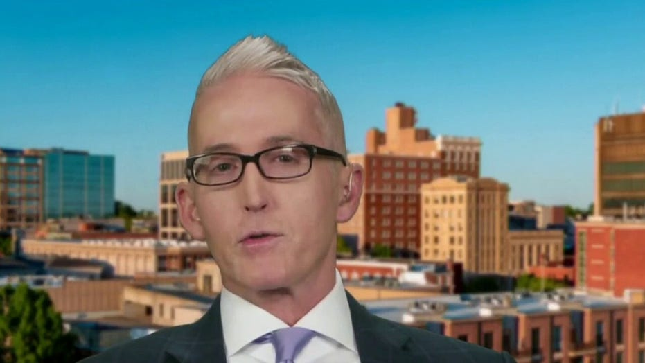 Trey Gowdy: Biden a 'career offender' on racially curious comments