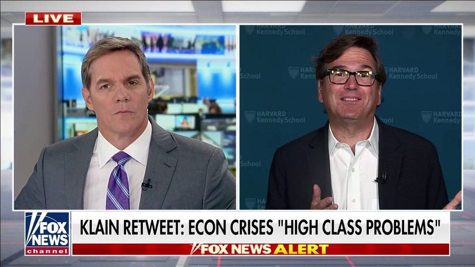 Hemmer presses pro-Biden economist on calling inflation a 'high-class problem': 'What were you thinking?'