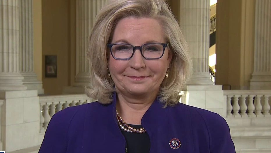 Liz Cheney rips 'dangerous' Trump for 'perpetuating lies': 'We do not swear allegiance to any individual'