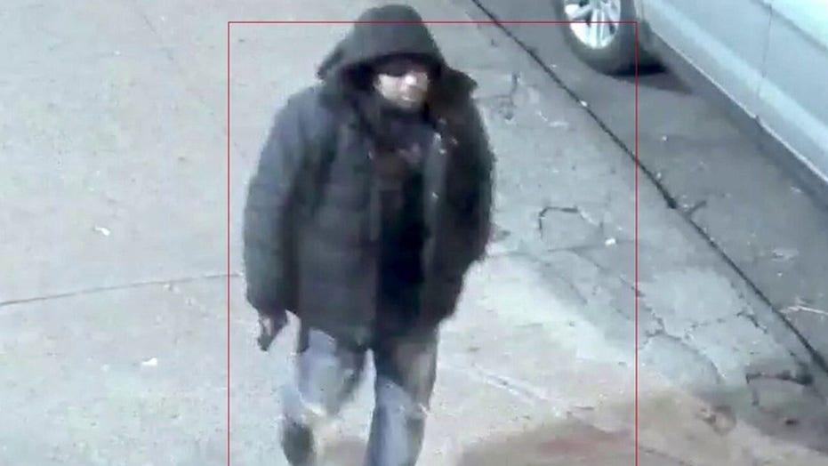 Violent felon on parole accused of ambushing New York City police officers
