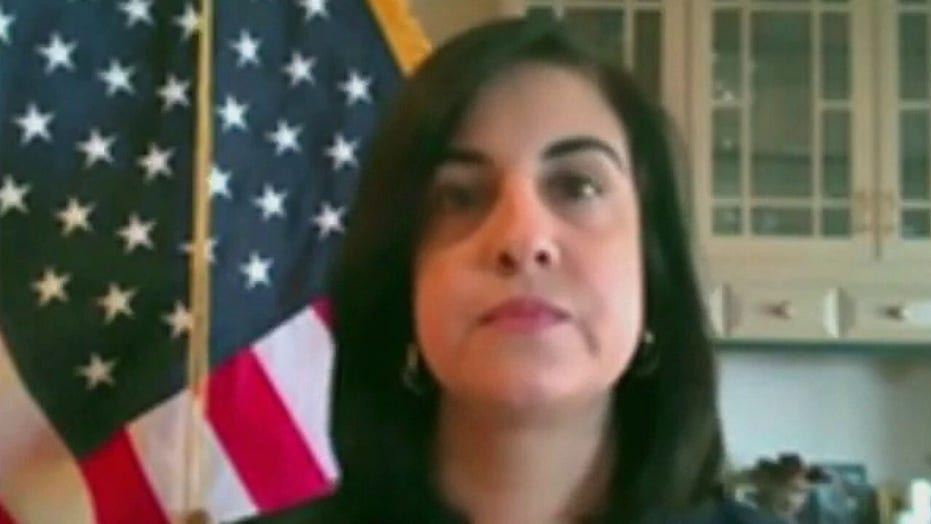 NYC Rep.-elect Nicole Malliotakis says AOC's growing influence in New York politics must stop