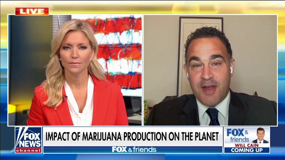 Dr. Kevin Sabet: Cannabis industry causing 'huge' environmental problems